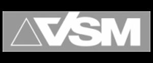 logo_vsm